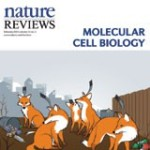 Cover_Nature_Reviews_Molecular_Cell_Biology